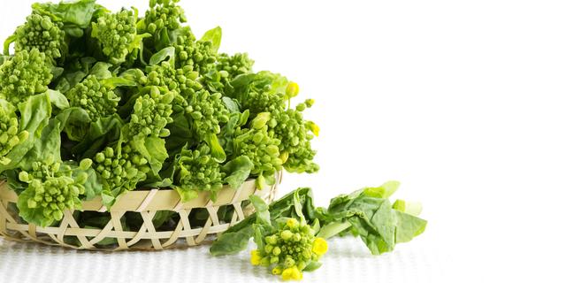 春野菜と山菜で冬の老廃物をスッキリ!栄養士おすすめの食材で自然派料理