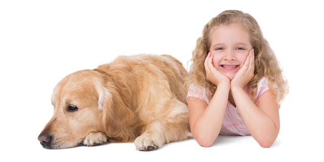 """闘病する子ども癒す""""ファシリティドッグ"""" 医療現場で活躍する犬のお仕事とは?"""