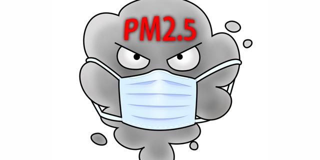 """""""PM2.5""""の飛散が日本でも懸念 大気汚染から身を守るためには?"""