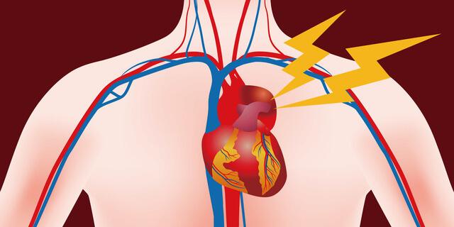あなたの血管年齢は大丈夫? 血管を健康的に若返らせる方法を教えて!