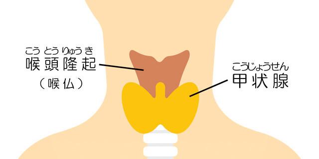 スーパーフード「アカモク」 花粉症や肥満予防も可能な注目食材!