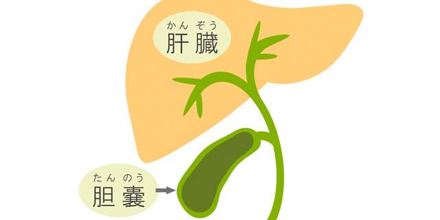 おみやさん刑事役 渡瀬恒彦さん死去 早期発見が重要な胆嚢疾患について