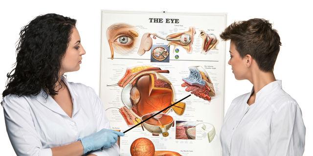 平行線や縞模様で頭痛も?視覚情報と健康の深い関係について