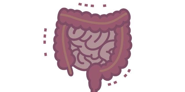病気に侵されている腸