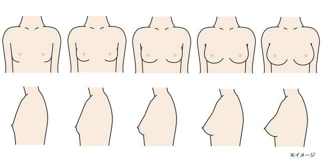 女の子の胸の成長過程