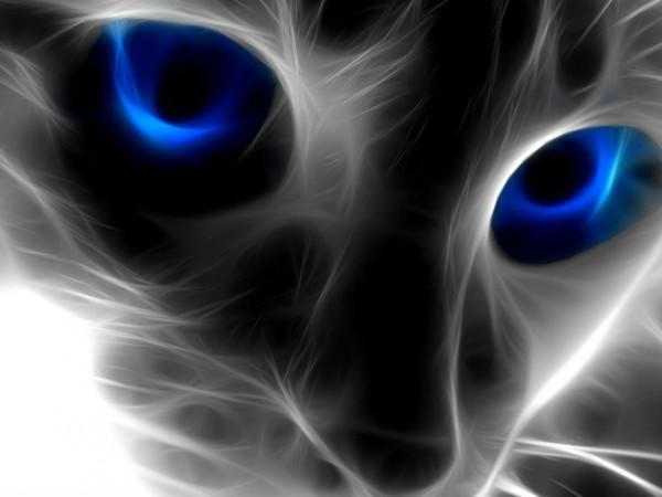 未来の人類は猫目になる!?人間の「進化した姿」がすごすぎる!