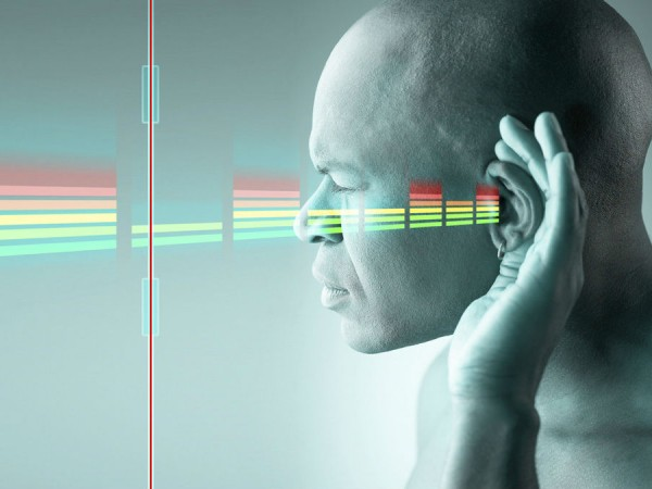 耳で「見る」、手で「読む」!?目の見えない人に学ぶ、私たちの脳のフシギ