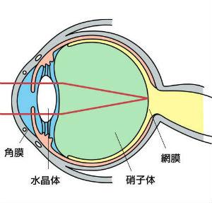 眼科医が教える視力回復法_02