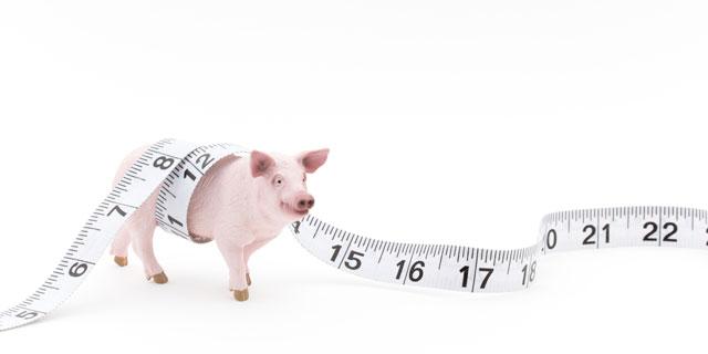 【メタボチェック】見た目に太ってなくても実は…3つ以上当てはまったら要注意!
