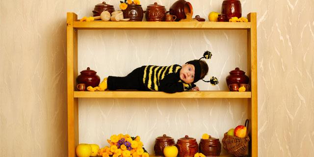 毒をもって毒を制す! 蜂の針を用いた「蜂針療法」があるらしい?