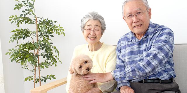 生活をもっと豊かに! 夫婦でペットを飼うメリットとは?
