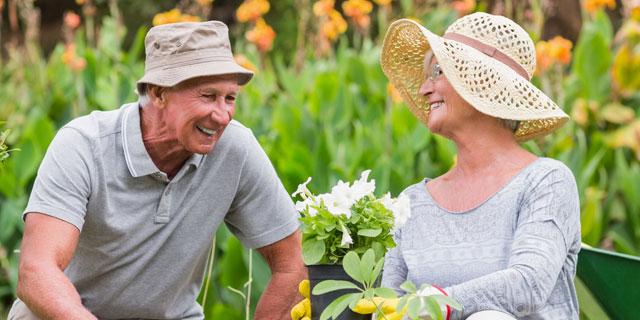 熱中症患者の半数は高齢者! 夏のおでかけには水分補給と栄養のあるお弁当を!