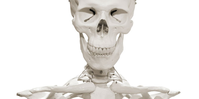 若者も気が付いたら骨がスカスカに…「骨粗しょう症」を招く3つの原因!
