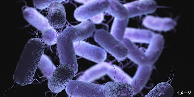 人食いバクテリア感染に要注意!恐ろしい病状を回避する3つの予防法