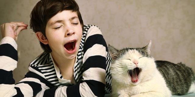 《あくびと頭脳》眠くないときにでる生あくびは脳疾患の前兆!?