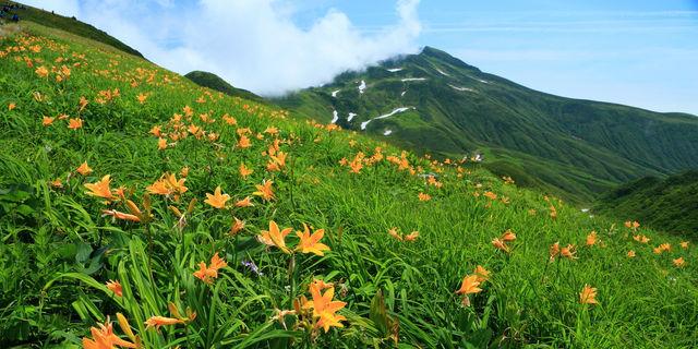 「山コン」ブーム到来の予感!大自然で育む恋愛メリット6つ