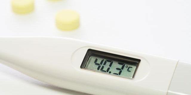 鳥インフルエンザ警戒レベル最高に ウイルスの感染経路と人へのリスク